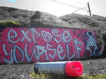2011-graffiti-with-robert-skot-mcmillan