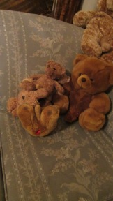 2012-audience-participation-fucking-teddy-bears-2
