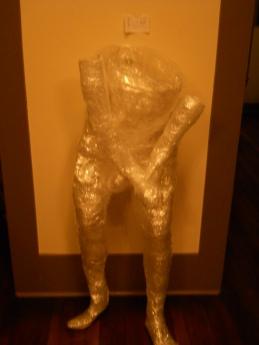 2012-my-plastic-cock